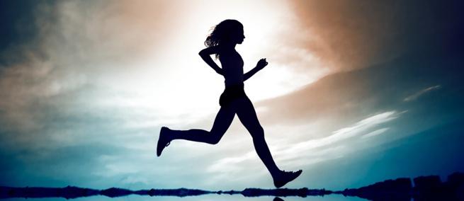 Alveola fitness